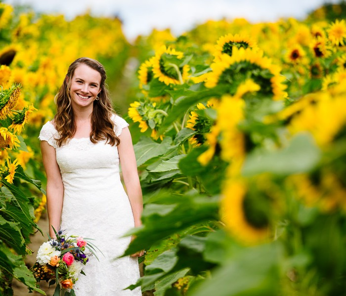 Sweet Berry Farm Wedding