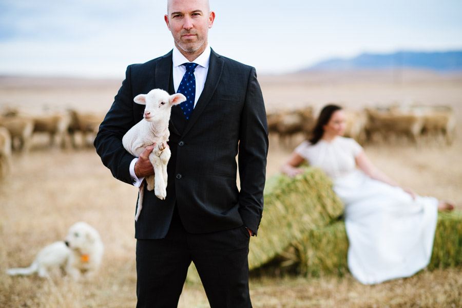 engagement session portrait with a baby lamb on a California ranch