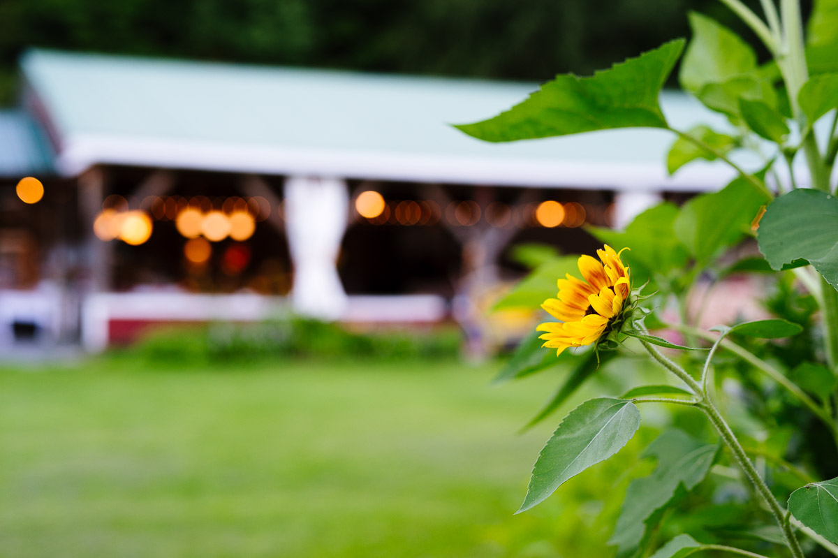 Rehearsal dinner at Lareau Farm Inn Vermont