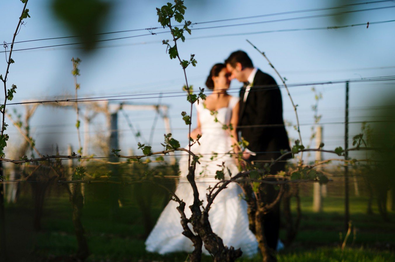 jonathan-edwards-winery-weddings-054