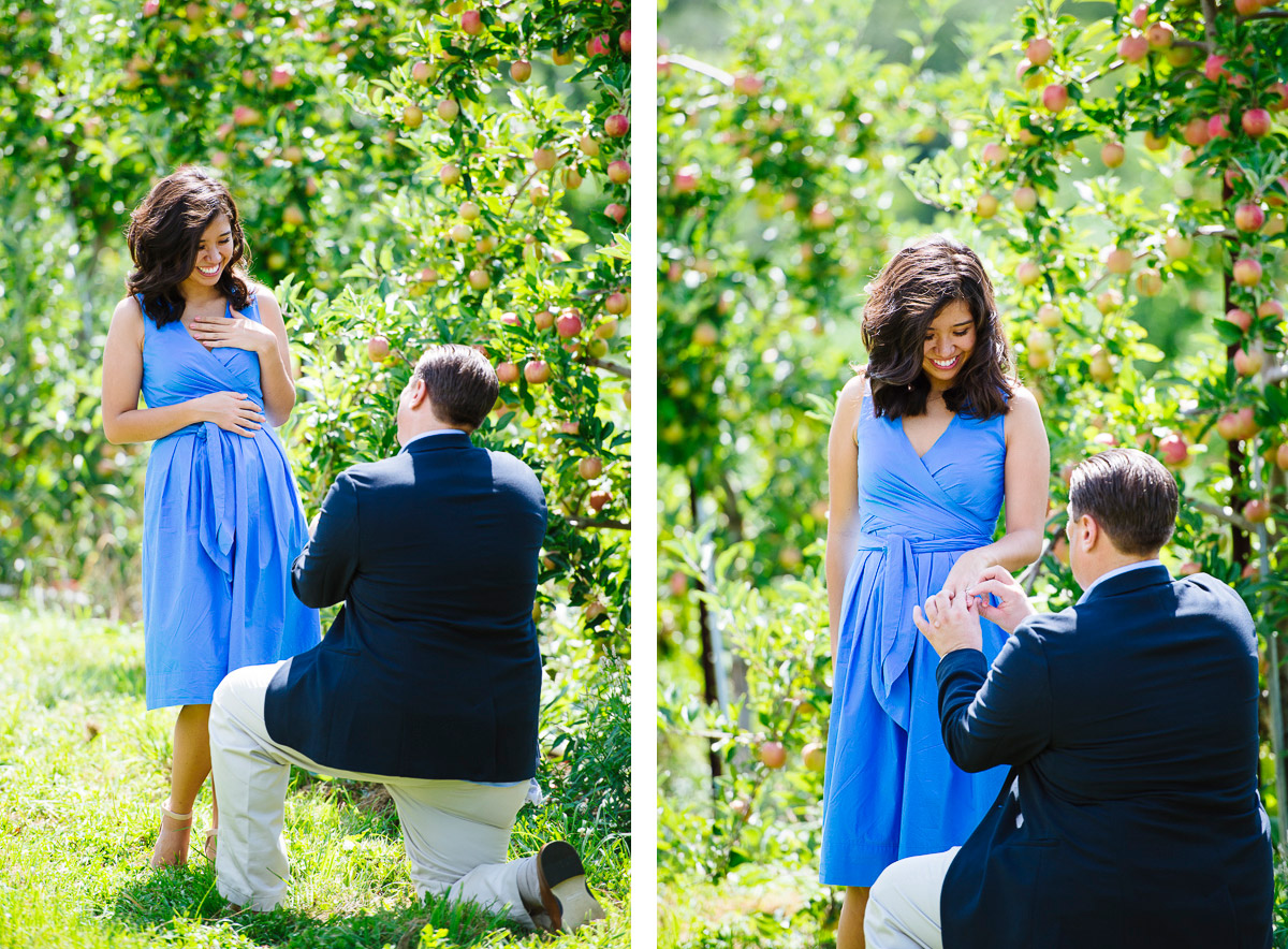 Honey Pot Hill Orchards marriage proposal